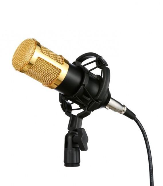 BM-800 Microphone professionnel avec Mont Shock et Adaptateur USB 3D Stereo