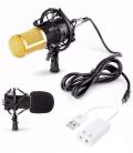 BM-800 Microphone professionnel USB avec carte son 3D Stereo integré et Mont Shock