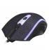 Souris Gamer XTRIKE GM-206 avec 1200 DPI, 4 Boutons RGB