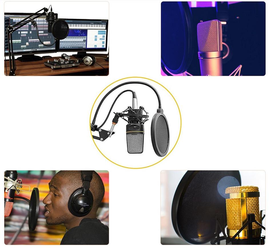 microphone avec filtre
