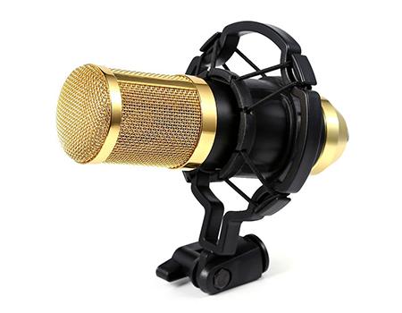 Microphone BM-800
